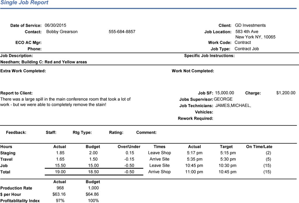 erp-single-job-report